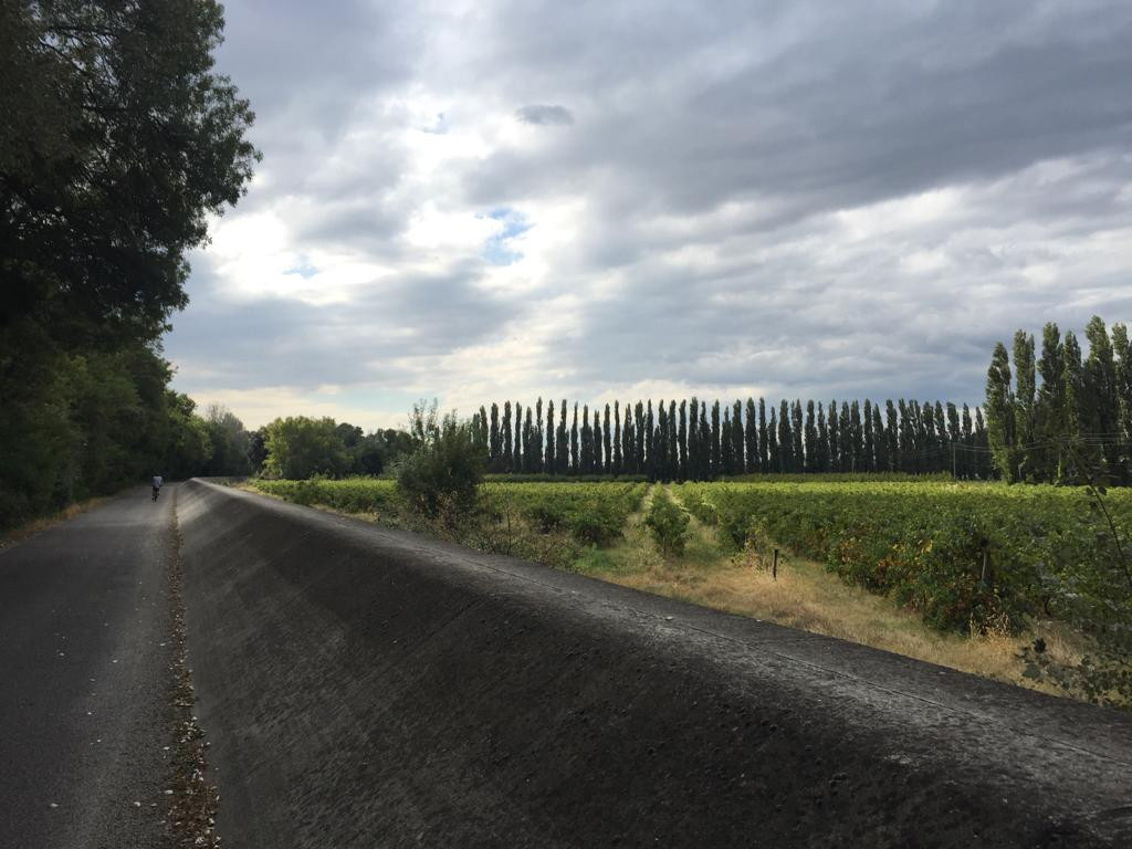 Between Viviers and Bourg-Saint-Andéol, vineyards are protected from the risks of Rhone flooding by a concrete dike.