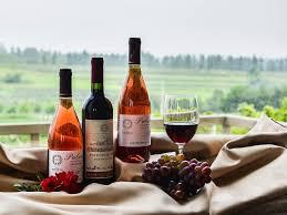 Wines (Chile, Argentina)