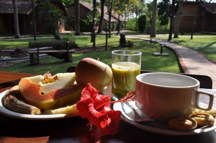 Breakfast at the fazenda