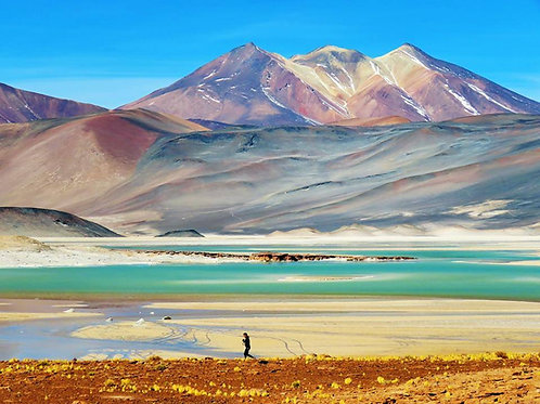 Northern Andes SDT