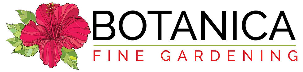 Logo-Design-Botanica-web.jpg