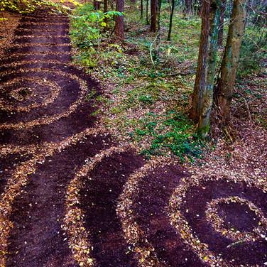 Wald 160150