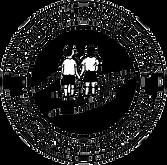 RCSI Logo.png