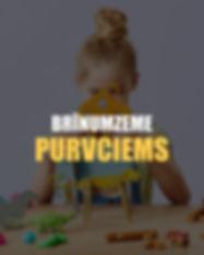 PURVCIEMS.jpg