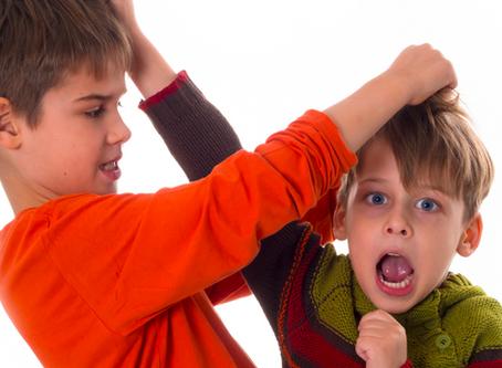 Briga entre irmãos, como lidar?