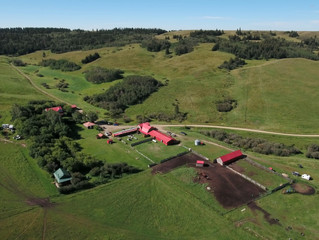Historic Reesor Ranch Cypress Hills