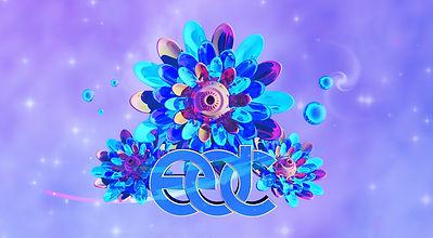 edc_07.jpg