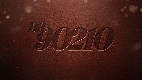 90210_Stiched_Logo_EP_V02.jpg