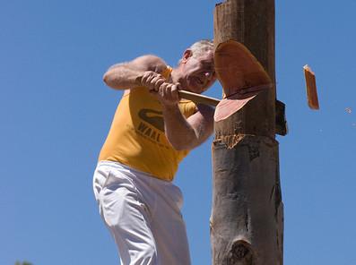 Log Chop 1.jpg
