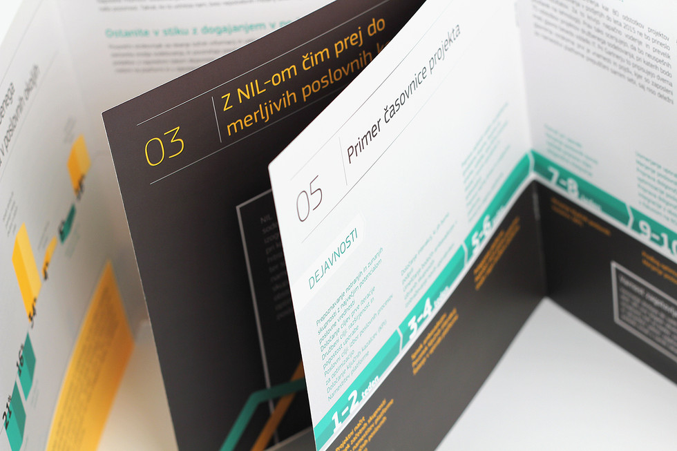 IN Sync Brochure