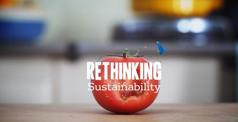 Veolia Sustainability
