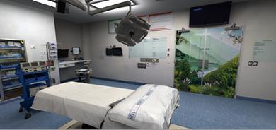 VREMEDIES - AUCKLAND DISTRICT HEALTH BOARD