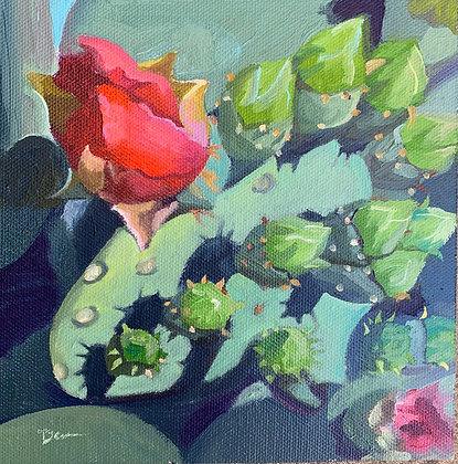 Desert Blooms Series #3