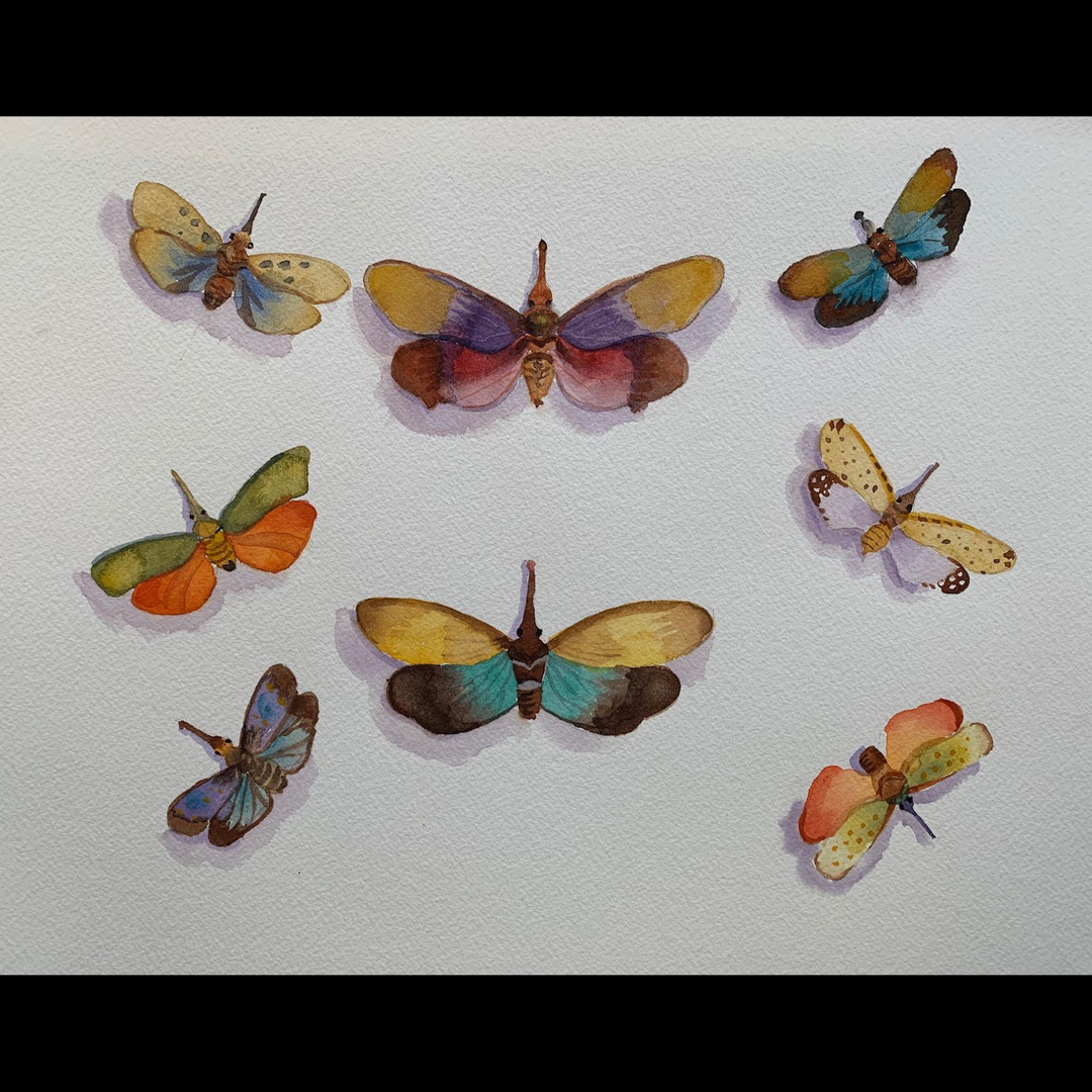 Available - Watercolor Painting - Rainbow Insects 3 of 3