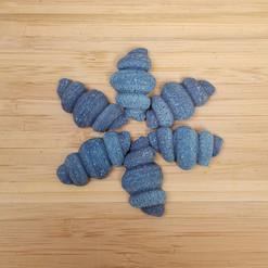 Blue Spirulina Conchiglia