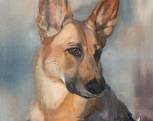 Devon Meyer - Oil Painting - Phoebe