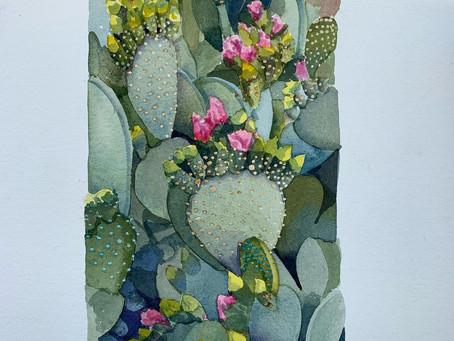 Pandemic Journal #30/Desert Blooms #1