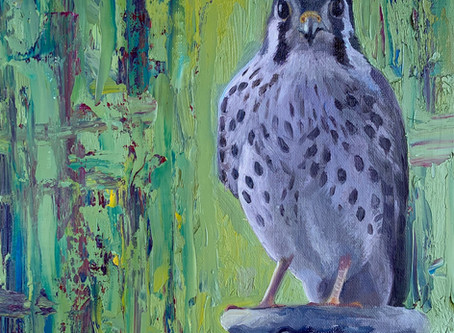 Falcon in the Garden