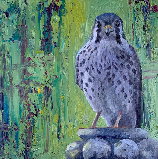Available - Oil Painting - Falcon in the Garden