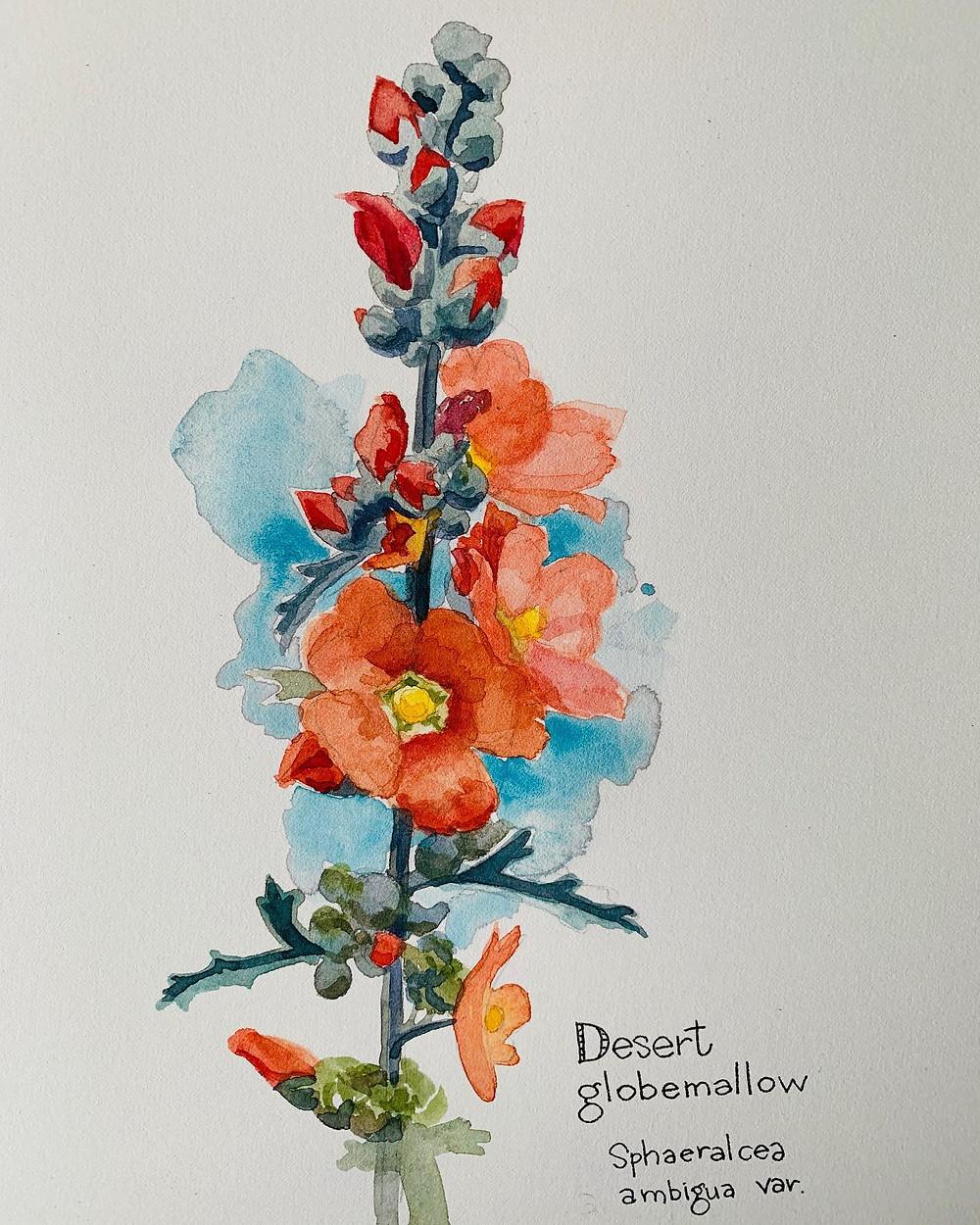 watercolor painting by local Phoenix artist Devon Meyer