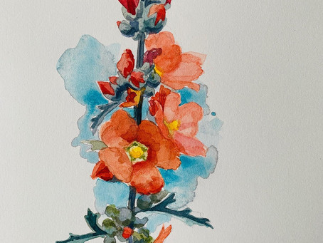 Desert Blooms #6