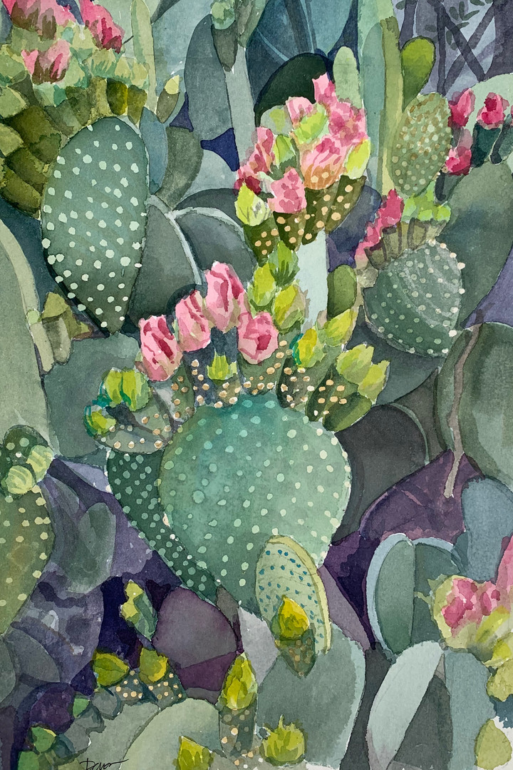 Available - Watercolor Painting - Pink Blooms on Prickly Pear