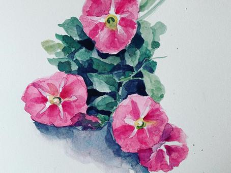 Desert Blooms #5