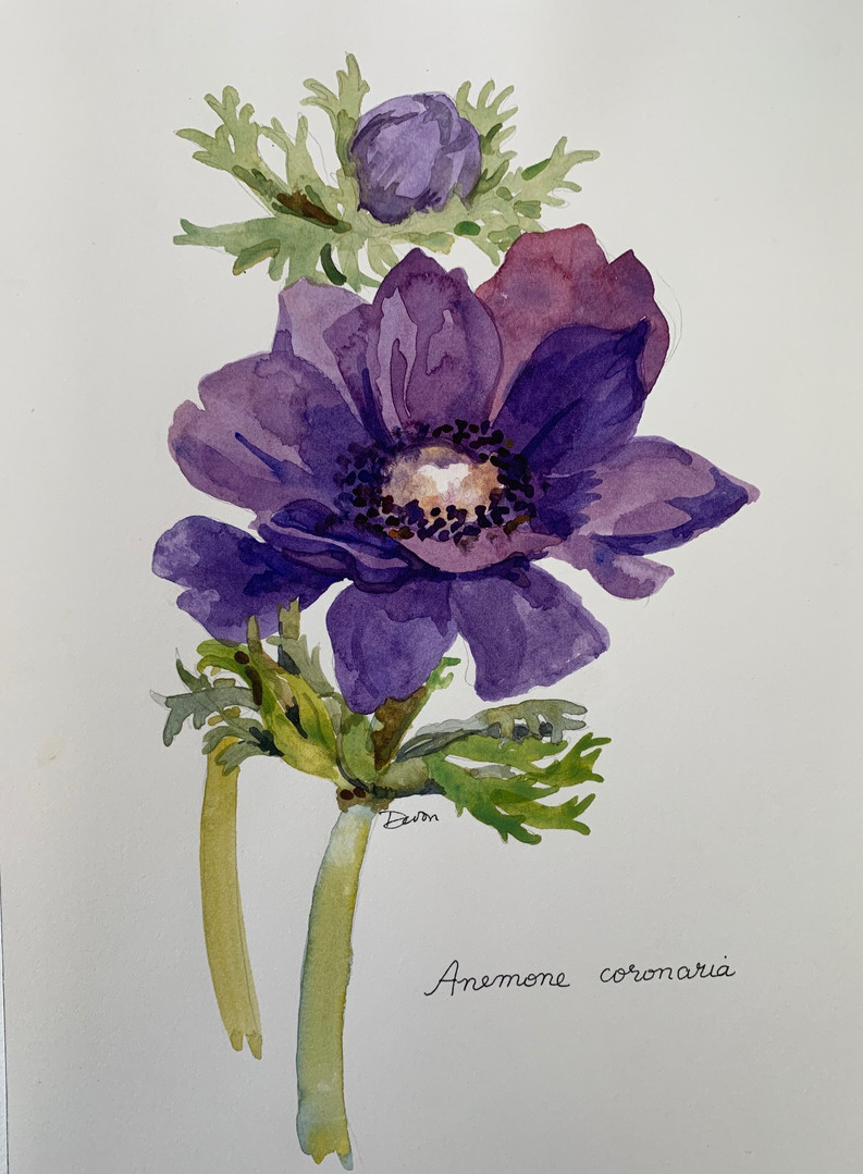 Available - Watercolor Painting - Botanicals 1 of 3