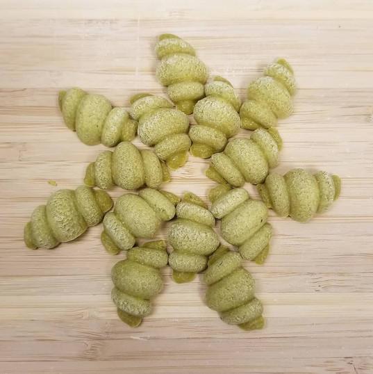 Gluten free Spinach Conchiglia