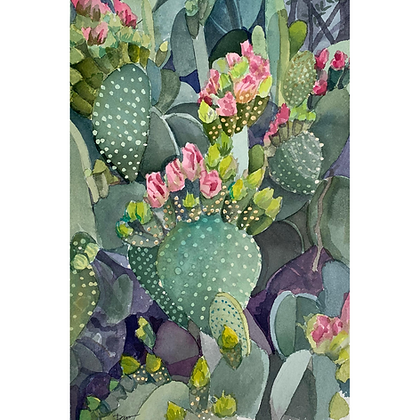 Pink Blooms on Prickly Pear