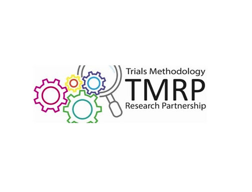 MRC-NIHR Trials Methodology Research Partnership Statistical Analysis Working Group