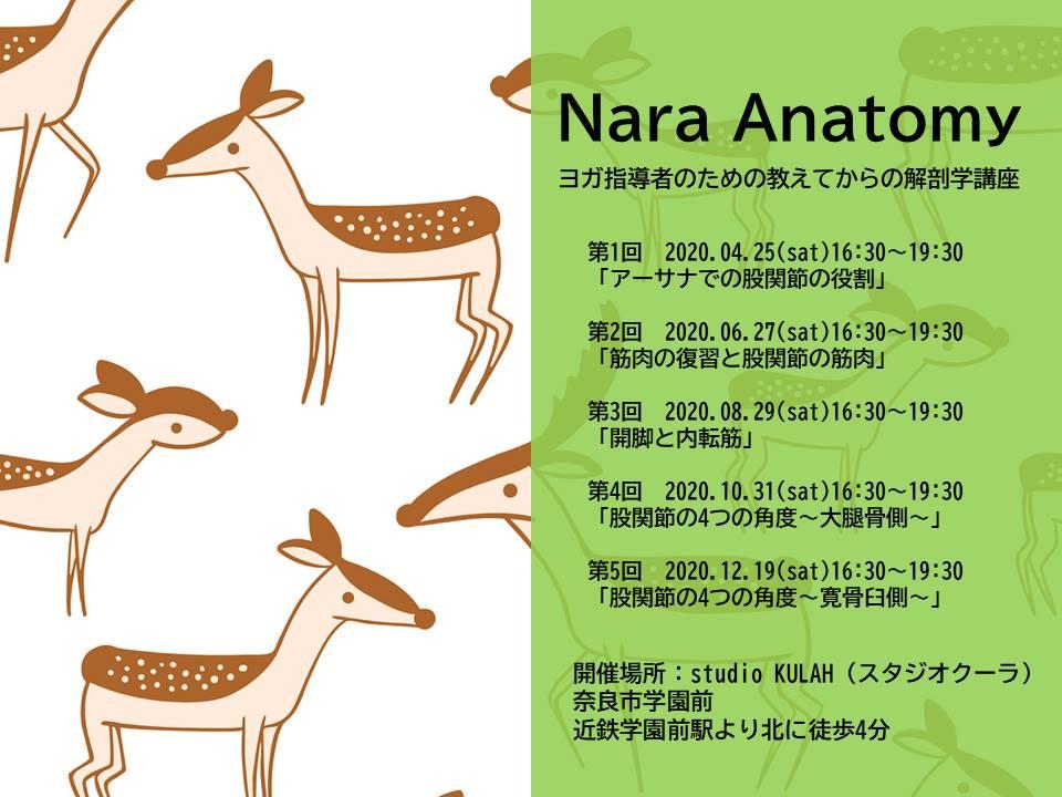 Nara Anatomy