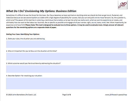 Decision Making: Visioning Your Options - Business Edition - D, NB