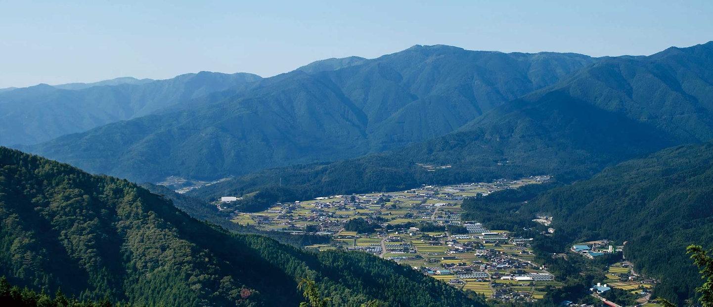 尾城山.jpg
