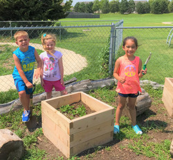 Our new raised beds!