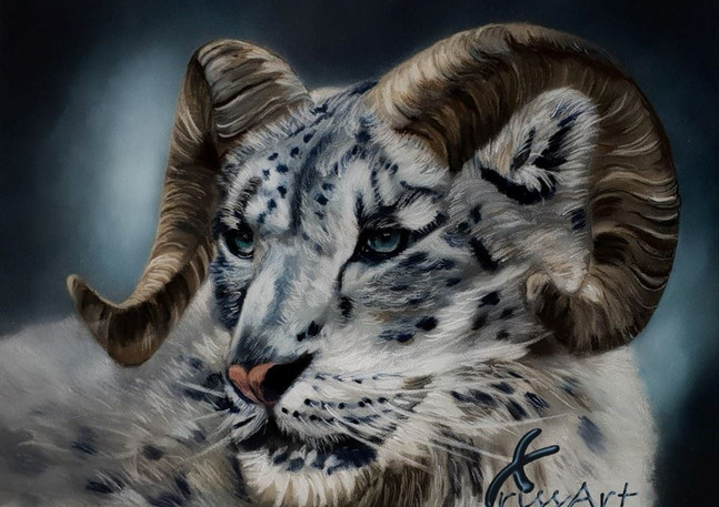 Fire - Big Horn Snow Leopard