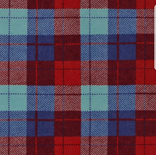 Blue & Red Plaid (Over the Collar)