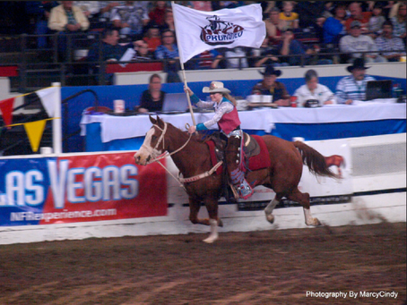 Miss Rodeo I llinois 2010 - Katie Chaffin