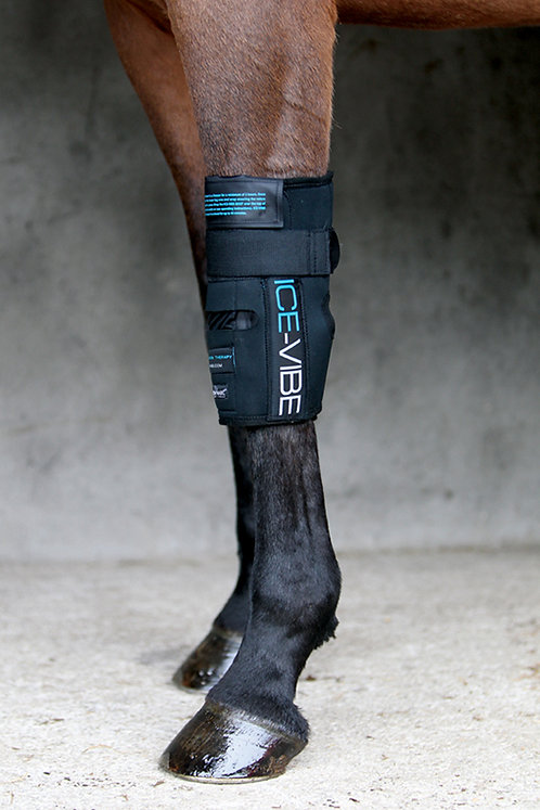Ice Vibe - Knee Boots