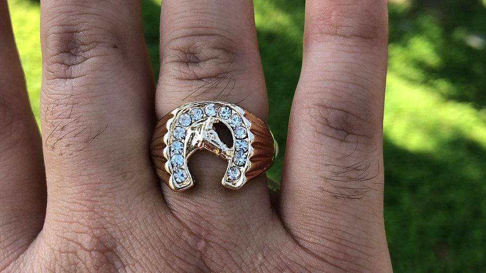 Caballo ring