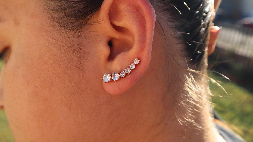 Brillando Earrings