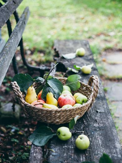 садовые-груши-и-яблоки.png