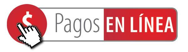 PAGOS-EN-LINEA $.jpg