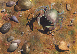 SOLD - The Day of the Crab