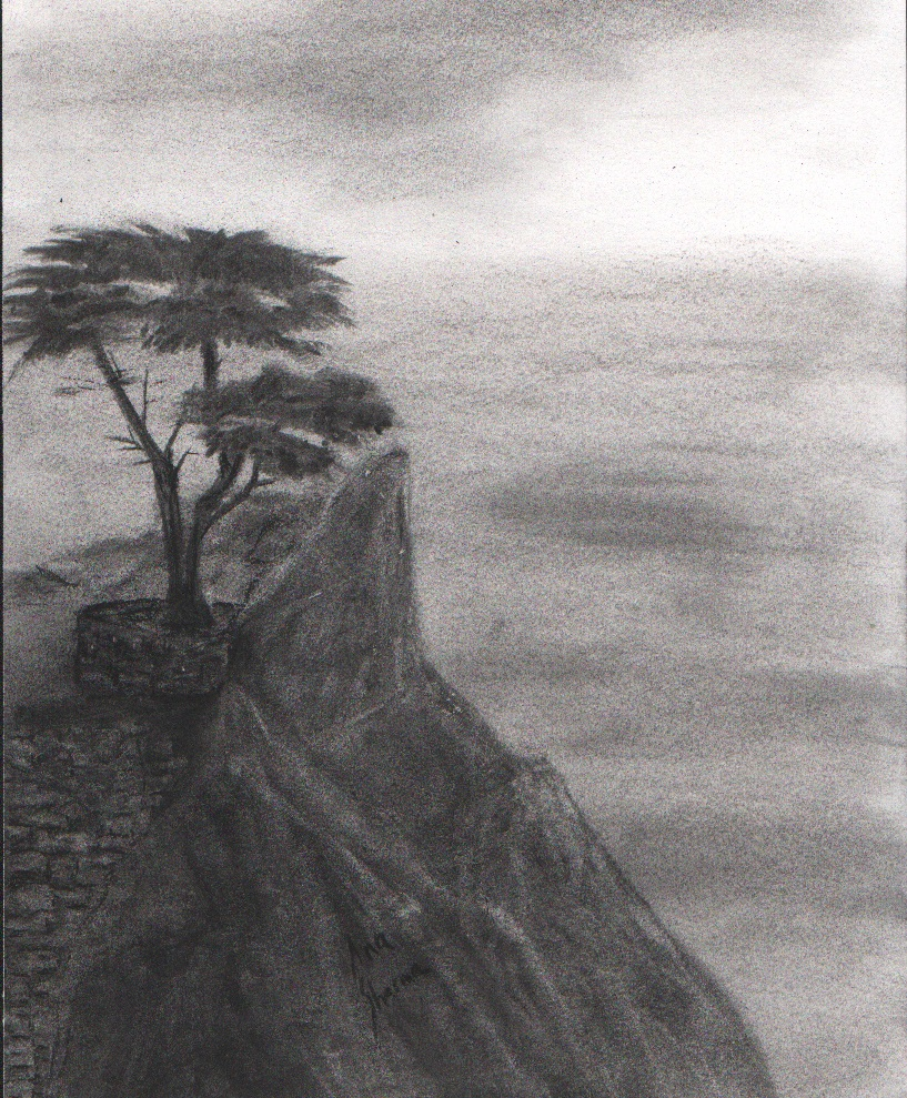 SOLD - Lone Cypress