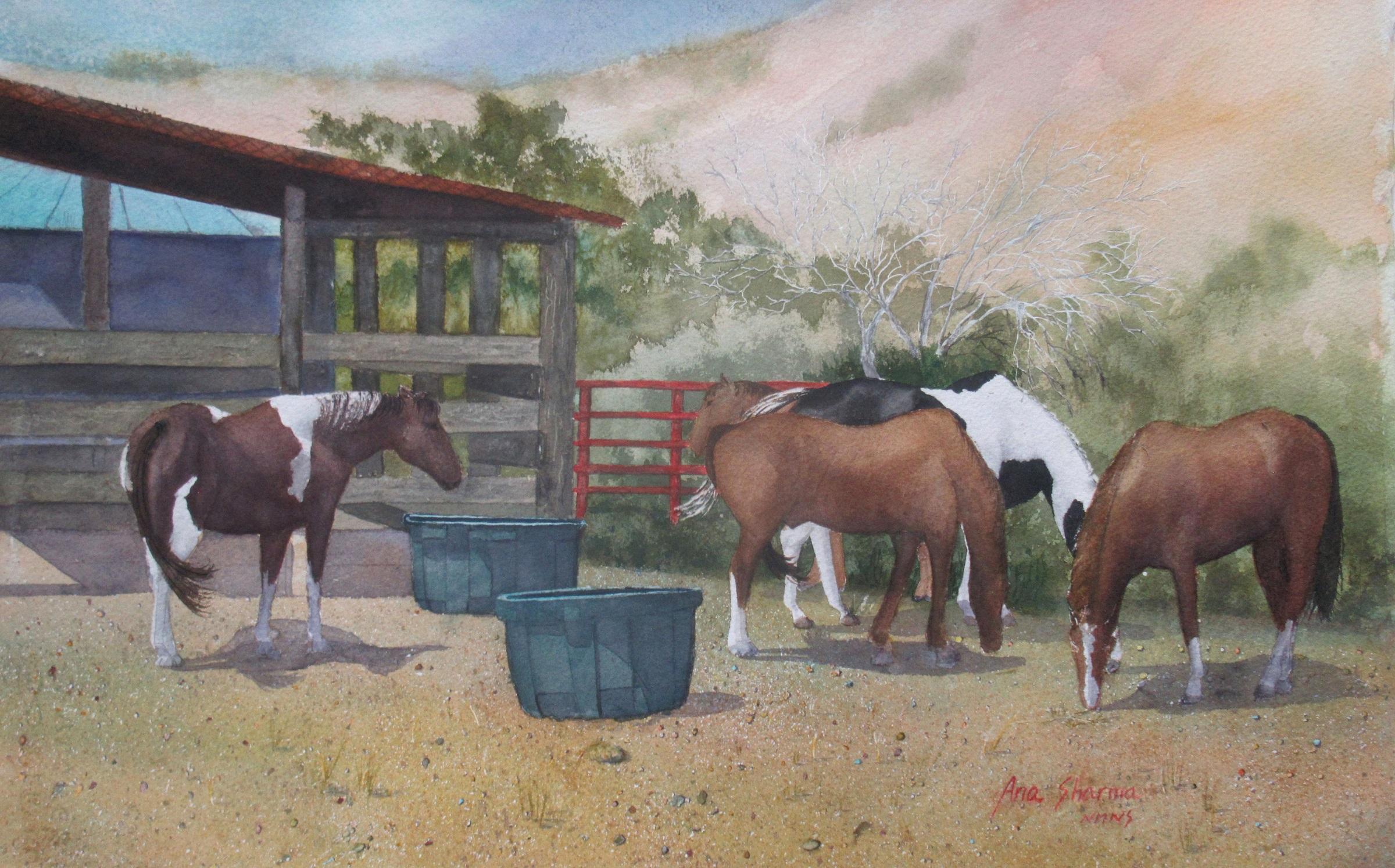Ghost Ranch Beauties II