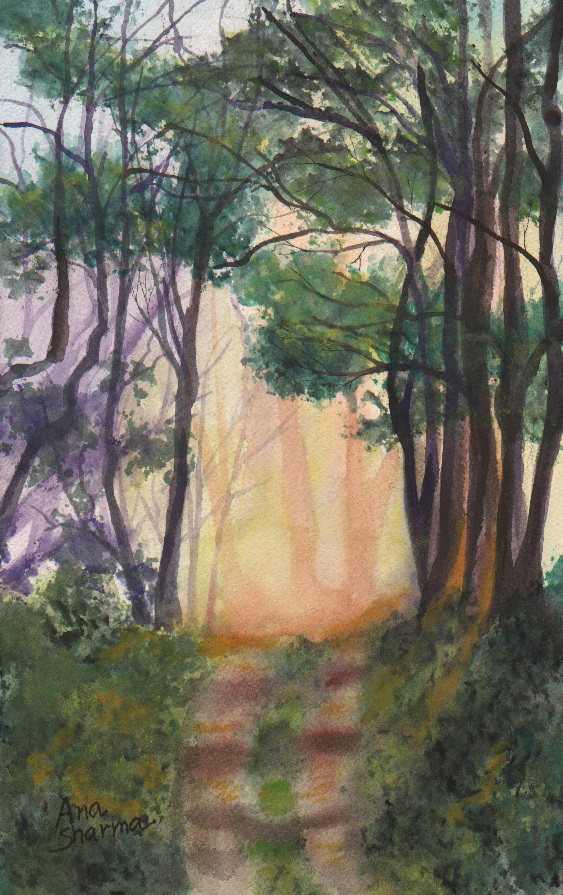SOLD - Walk in the Woods