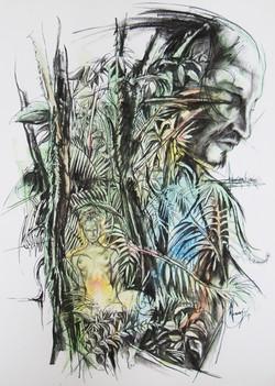 Sacerdotiza de la selva
