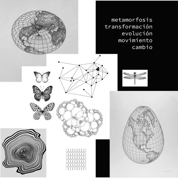 metamorfosis_convocatoria-05.png