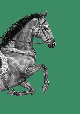 Horse_Dark Green.jpg